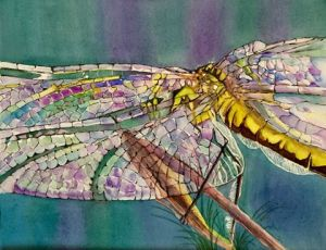 """Emerging"" Watercolor by Pamela Haunschild"