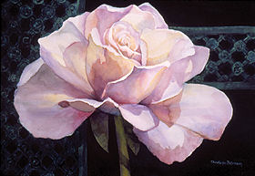 "A Rose is a Rose 37"" x 29"" watercolor gicl'ee reproduction available"