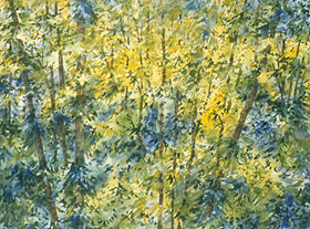 Woodland Medley 38 x 30 watercolor