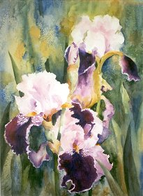 "Spring Blooms 25"" x 30"" watercolor Giclee available"