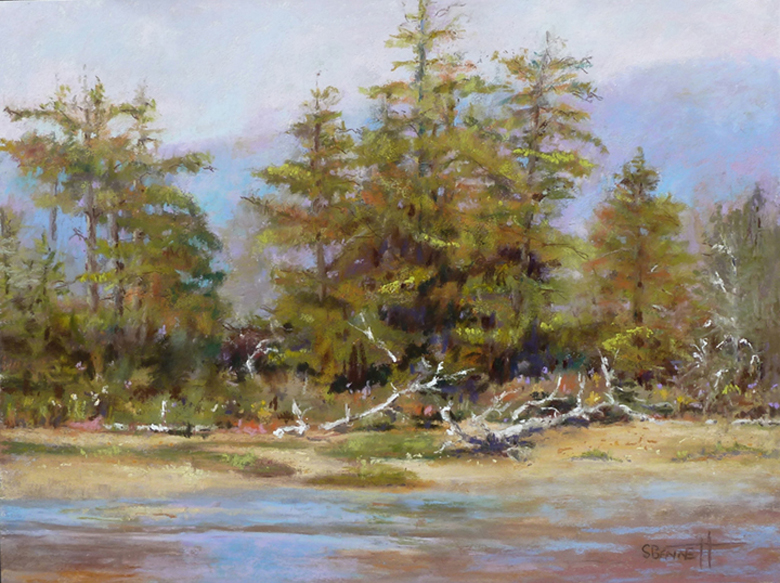 """""""North of Lincoln City"""" pastel"""