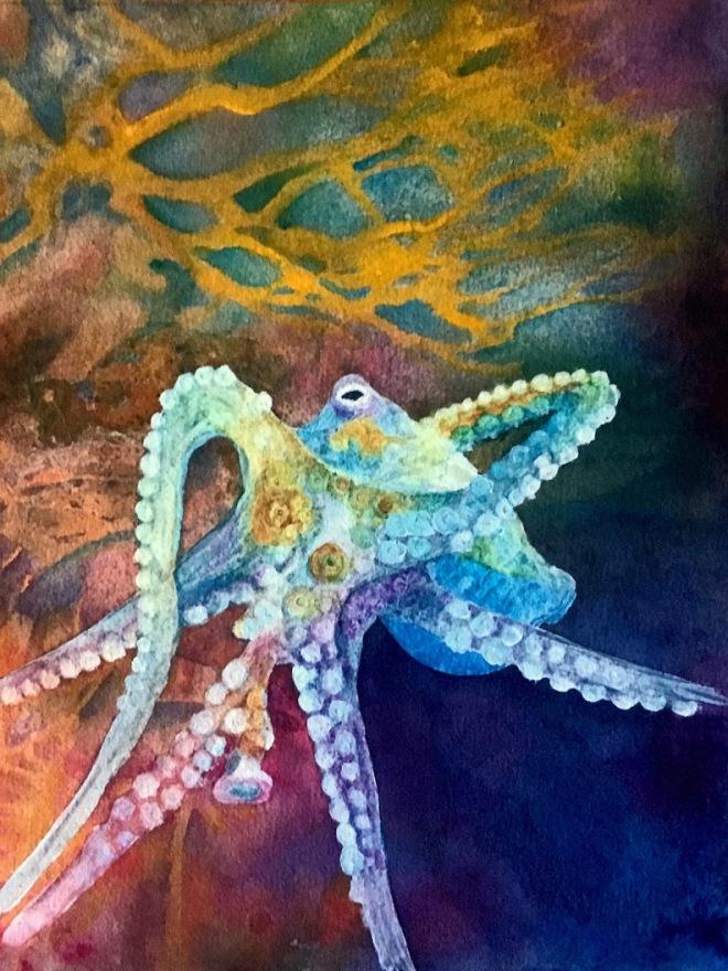 Octopus' Garden by Pamela Haunschild